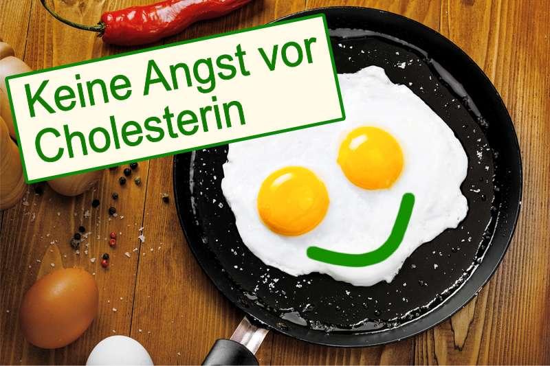 Cholesterin und der Einfluss unserer Ernährung